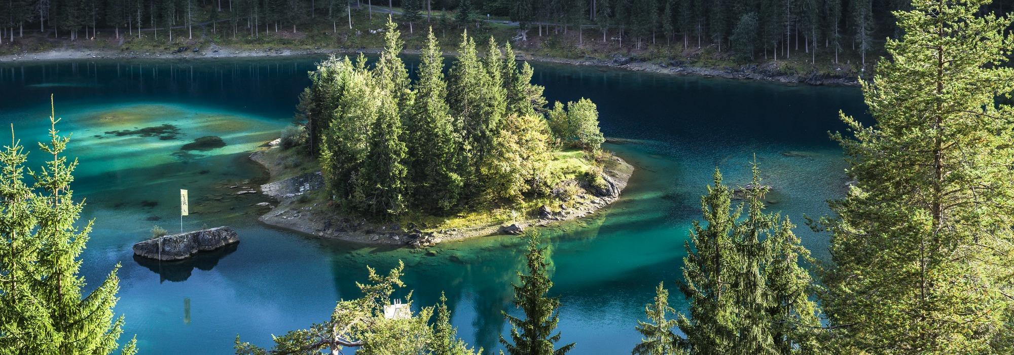 Türkis-Grüner See im Walde