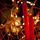Adventszeit im FidaezerHof